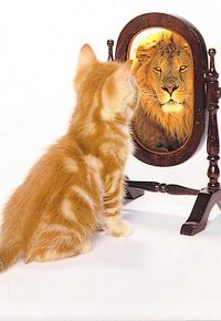 Как Придать Себе Уверенности