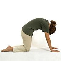 йога для начинающих для позвоночника