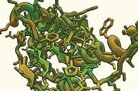 опасен ли протеин