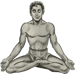 йога и простатит - сиддхасана